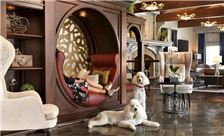 Reikart House, Buffalo, a Tribute Portfolio Hotel Accommodation - Lobby Entrance