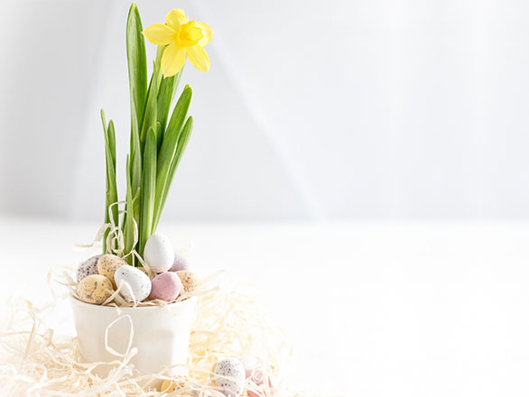 From Our Kitchen To Yours: Easter Brunch 2019